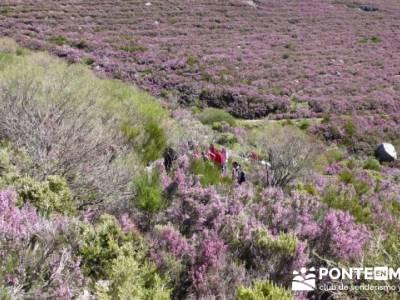Senderismo Segovia - Macizo de la Buitrera; tienda senderismo madrid